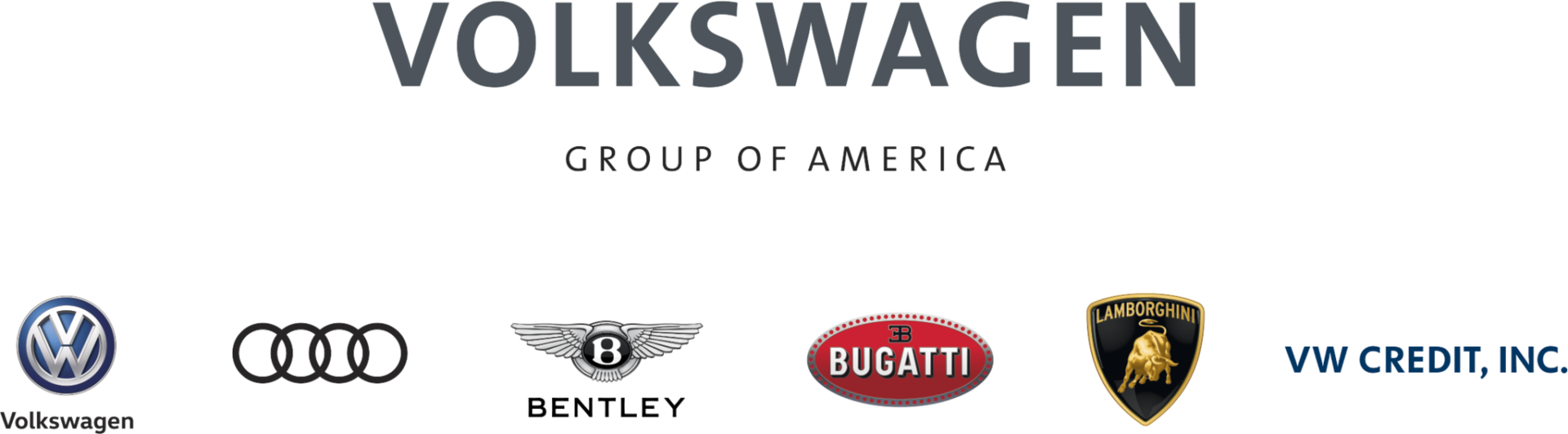 Volkswagen Group of America Logo